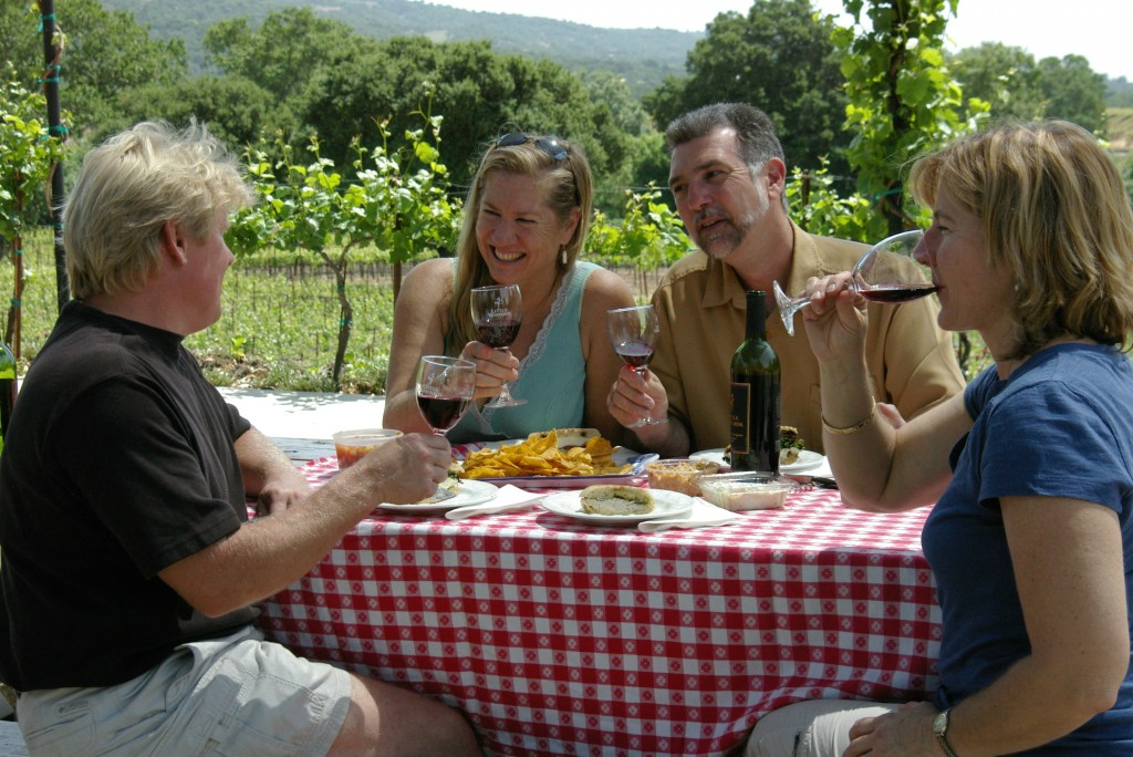 Group has lunch with wine in vineyard