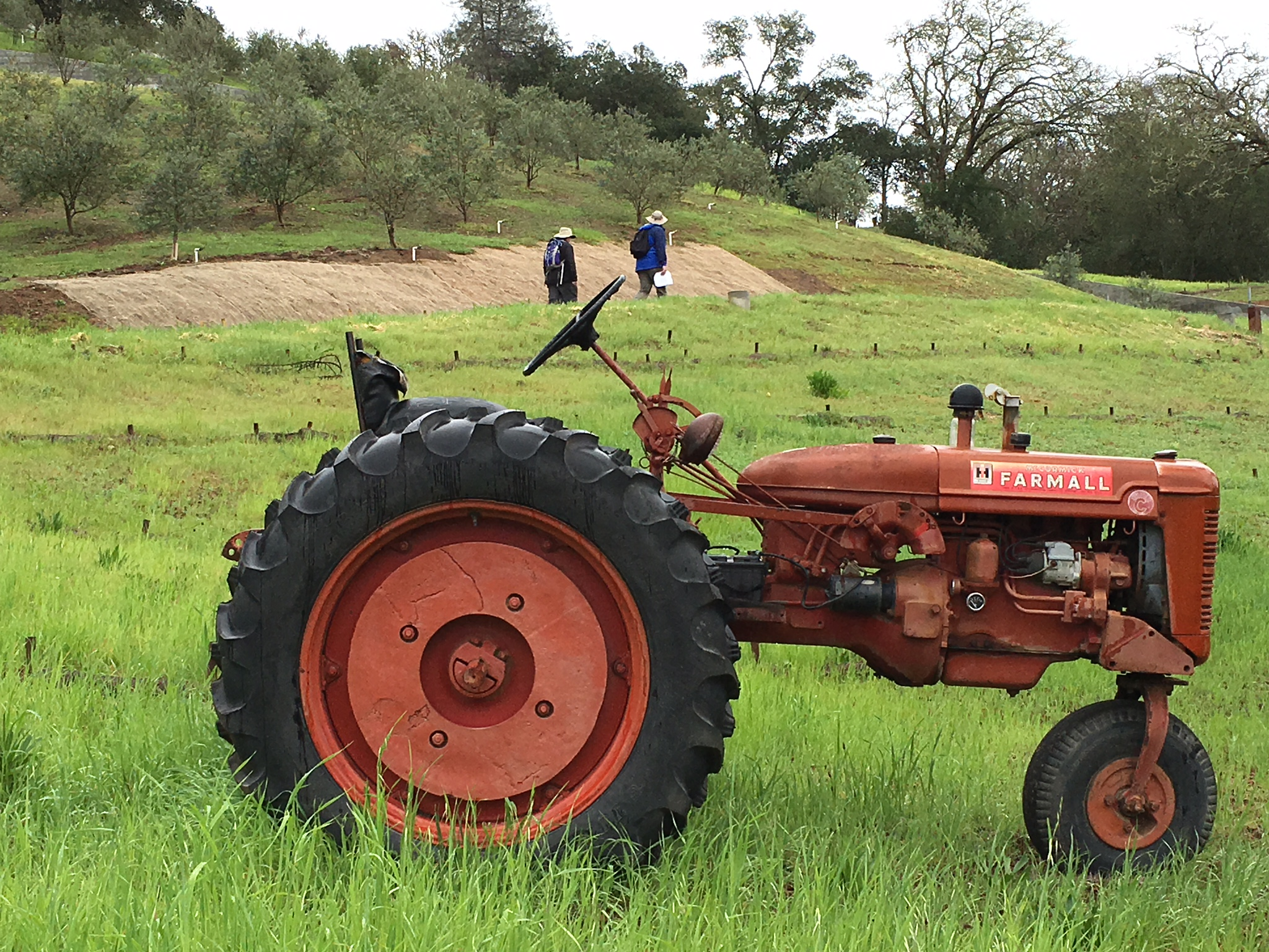 An old tractor in a field in Dry Creek Valley near Healdsburg