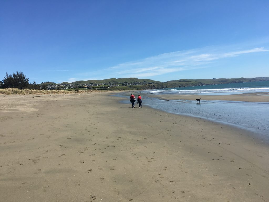 Doran Beach in Bodega Bay